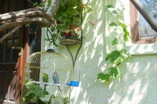 Гостевой Дом Парусник - фото 46