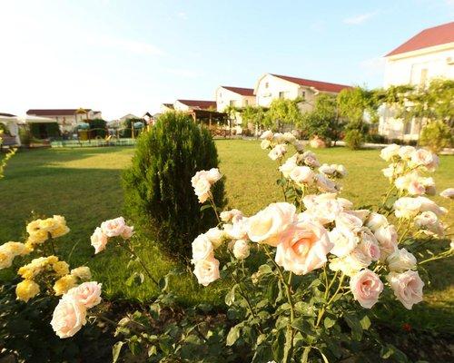 Отель Нарлен / Narlen Hotel - Коктебель - фото 19