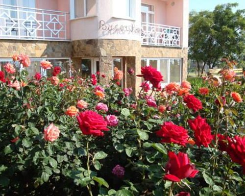 Villa Rose Koktebel - Коктебель - фото 18