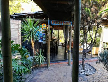 Saltycrax Backpackers and Surf Hostel