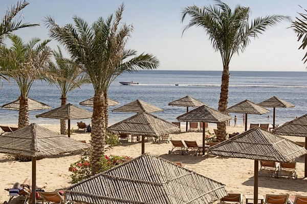 Miramar Al Aqah Beach Resort (ех. Iberotel Miramar Al Aqah Beach Resort) - фото 22