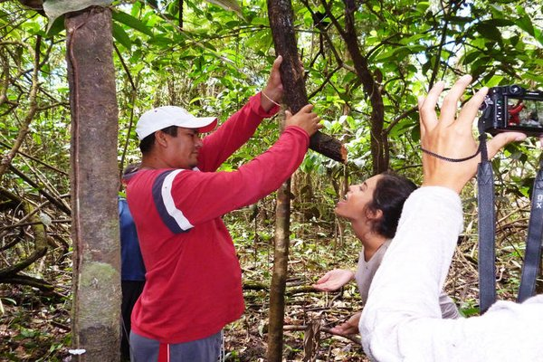 Amazon Yanayacu Lodge - фото 20