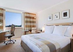 Radisson Blu Hotel & Resort, Al Ain фото 3