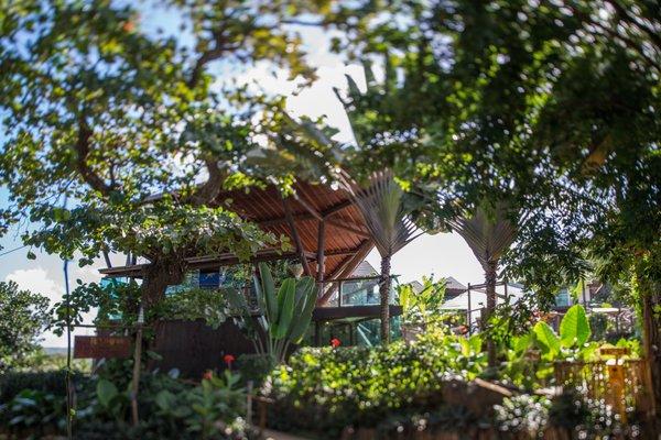 Teju-Acu Ecopousada - фото 9