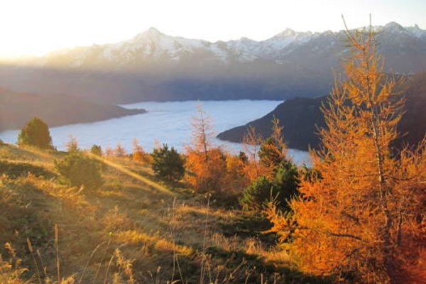Alpenchalet Zillertal - фото 21