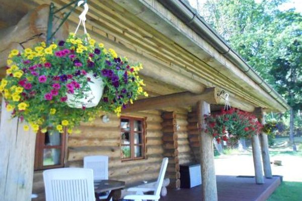 Forest Edge Lodge - фото 14