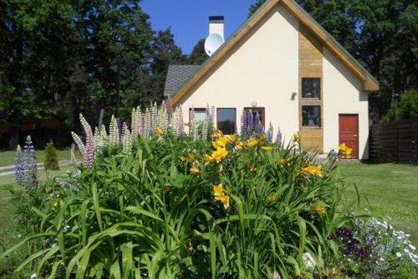 Forest Edge Lodge - фото 21