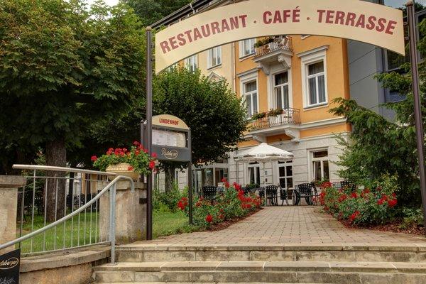 Hotel Lindenhof Bad Schandau - фото 23