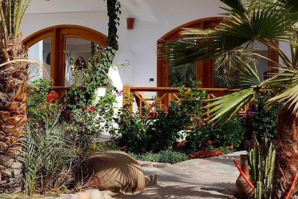 Отель Planet oasis resort - фото 19