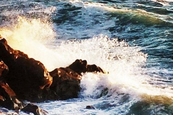 Holiday Home Av. Maritima - 10
