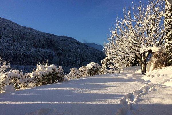 Villa Ried - фото 3