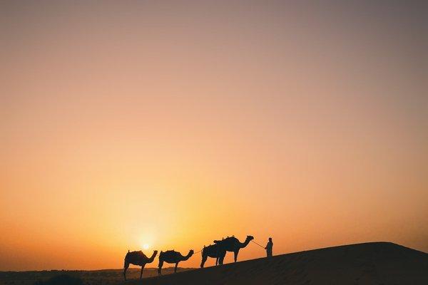 Al Maha, a Luxury Collection Desert Resort & Spa, Dubai - фото 17