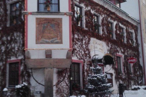 Hotel Bila Pani - фото 23