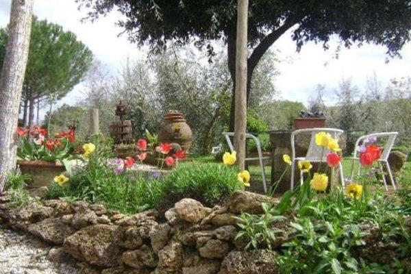 Azienda Agricola Polveraia - 18