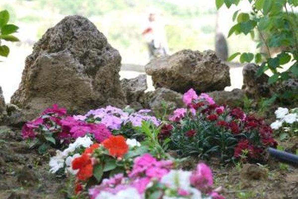 Azienda Agricola Polveraia - 19