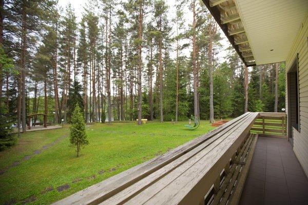 Дом Приемов Хижина - фото 10
