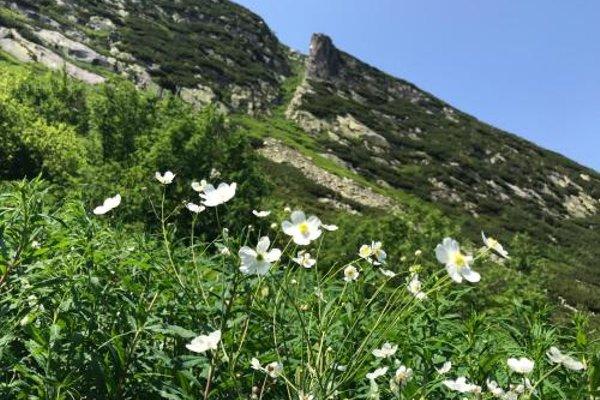 Apartament Rest & Ski - фото 7