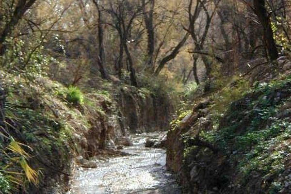 Casa Rural La Cateta - фото 20