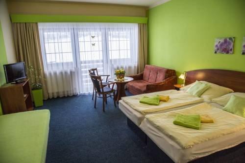 Hotel Centrum Harrachov - фото 15