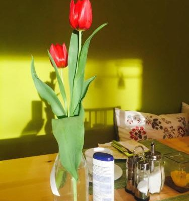 Appartementhaus Sonnen - фото 17