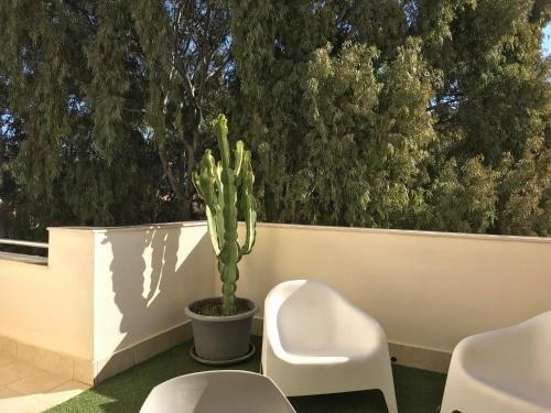 Apartamentos Dona Carmen - фото 23