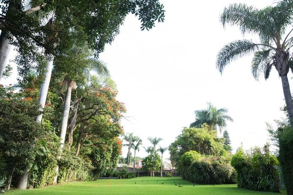 Hotel Jacarandas - фото 13