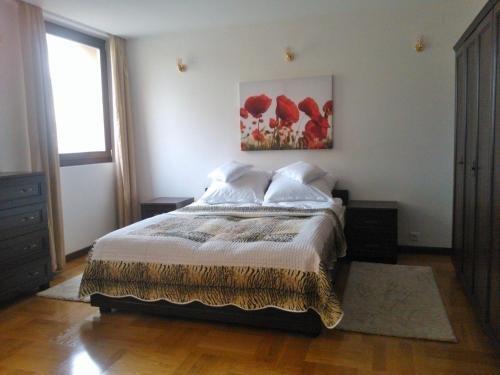 Apartament Nowiniarska - фото 1