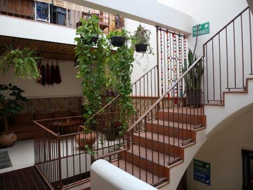 Hostal La Cochinilla - фото 21