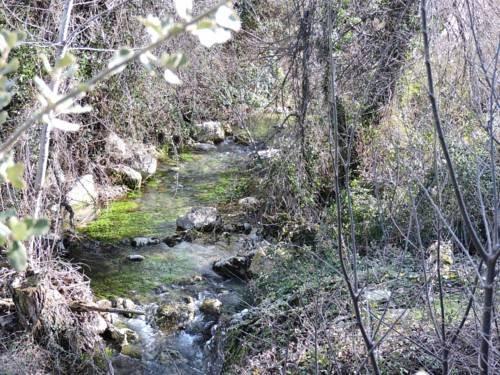 La Cova Del Groc - фото 18