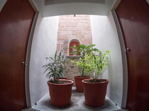 Hotel Qualitel Centro Historico - фото 20