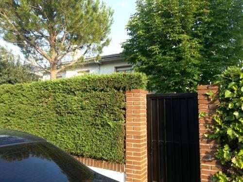 Villa Del Burgo - фото 14