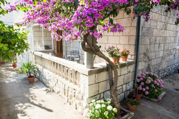 Apartments Bungevilla - фото 2