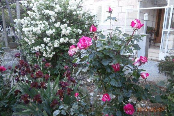 Apartments Bungevilla - фото 7