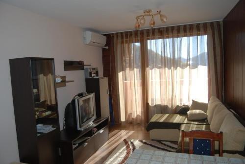 Apartment Smolyani - фото 2