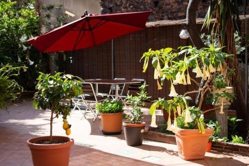 Pavarotti Room - фото 15