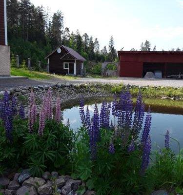 Holiday home Kareliya - фото 18