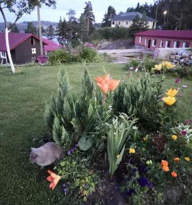 Holiday home Kareliya - фото 8
