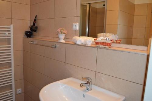 HOTEL ARENA - фото 7