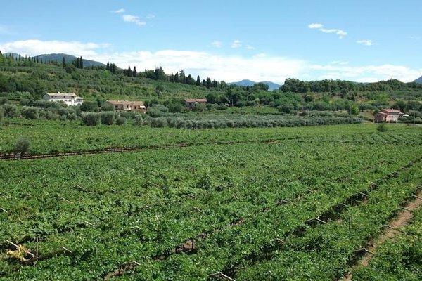 Agriturismo La Rocca - фото 8