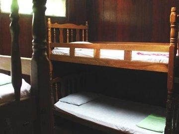 Jungle Lodge Alang Sedayu