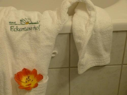 Hotel Eckartauerhof - фото 16