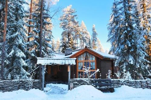 Shishki na Lampushke - Russkaya Derevnya - фото 23