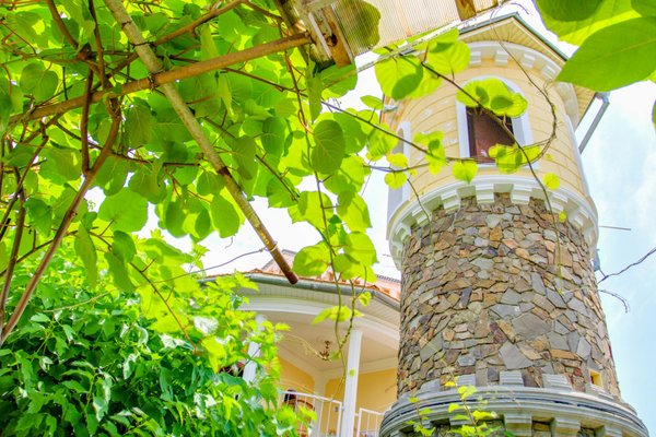Guest house Sokolinoe Gnezdo - фото 14