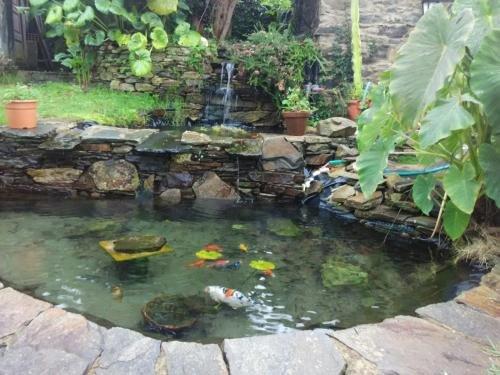 Casa Rural O Carreiro - фото 9
