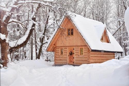 Drewniany domek Parzenica - фото 13