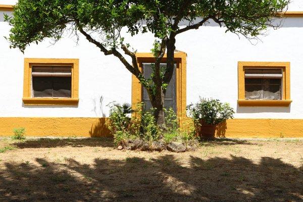 Casa Rural Finca Los Hierros - фото 14