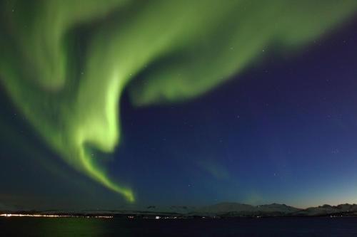 Smarthotel Tromso - фото 22