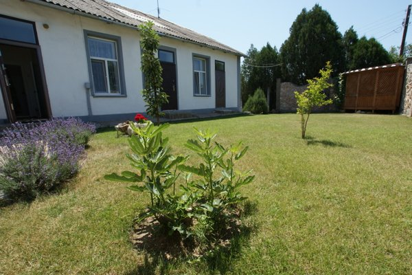 Guesthouse Krymskiy Dvorik - фото 19