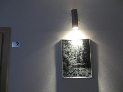 Krokusowa Polana - фото 7