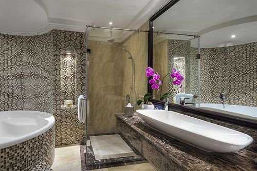 The Ajman Palace Hotel - фото 10